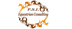 PSI Consulting